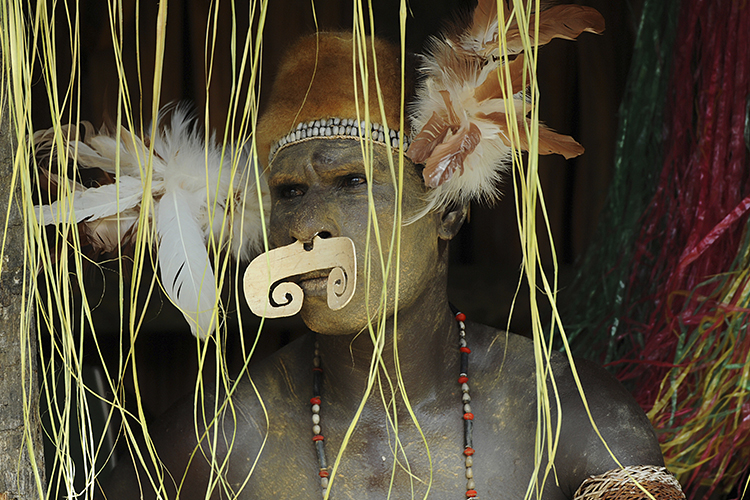 Ancient Cultures of Northern Australia and Papua