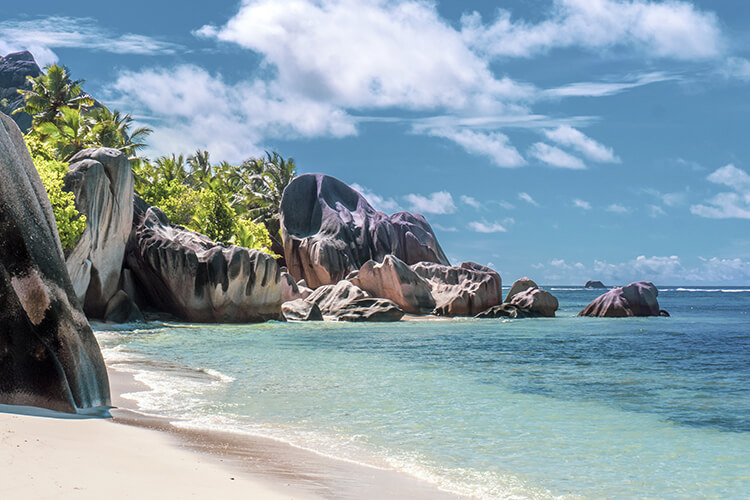 The Essential Seychelles