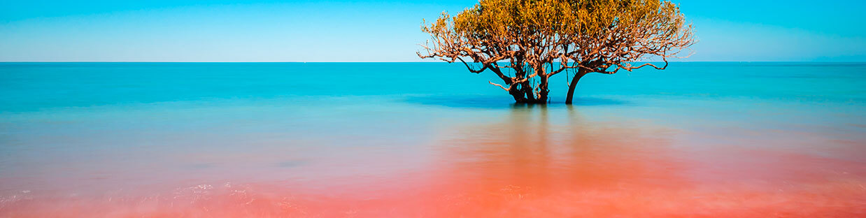 The wonders of Broome and why you should add it to your itinerary!